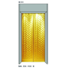 Elevator Door Panels For 630Kgs Passenger Elevator