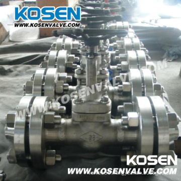Flanged Ends Stainless Steel Globe Valves (J41W)