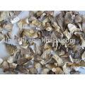 champignons d'huîtres séchés