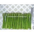 Suntoday vegetable F1 grow chinese assorted green Europe high times vegetable hybrid seeds for sale green asparagus seeds(A4400)