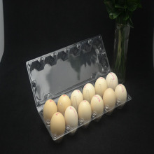2 Rows Holes In The Egg Tray