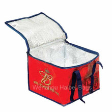 Insulated Cooler Bag (HBCOO-008)