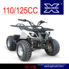 Mini Kids Use 110cc atv