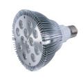 LED Light SY PAR38