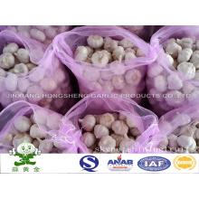 Normal White Garlic (red garlic) New Crop 2016 From China