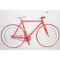 Men and Women Student Fixed Gear Bikes