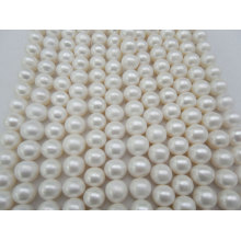 12-15mm große runde Süßwasserperlen Stränge (ES382)