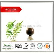 High Quality Herb Extract Polypodium leucotomos Extract 4:1