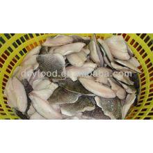 Frozen Tilapia fillet fish skinless boneless pbo