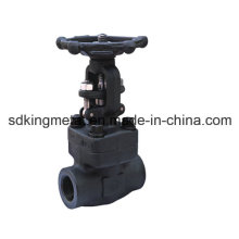 NPT Thread Forged Steel 300lbs Gate Valve
