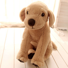 Plush Little Dog