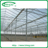 garden greenhouse for sales