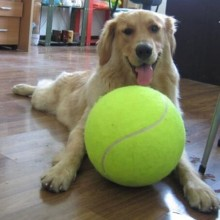Dog Tennis Ball Giant Pet Toys for Dog