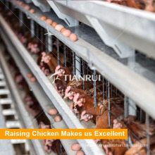 Conception de fournisseur de 4 couches cages de couche d'oeuf de poulet à vendre