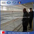 um tipo gaiola do equipamento das aves domésticas da galinha da bateria para a camada