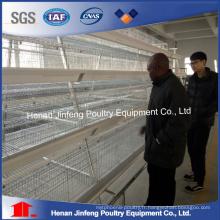 Système automatique de cage d'équipement de volaille de poulet pour la poule de poulailler de couche