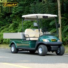 Custom 2 Seater coche eléctrico carro de golf eléctrico hotel utilitario buggy auto housekeeping coche
