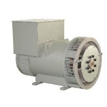 100% Copper Electric Single Bearing Alternator