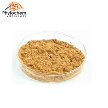 Antioxidants Natural Monk Fruit Sweetener nourish  brain Powder Top Quality Momordica grosvenori Swingle  Luo Han Guo Extract