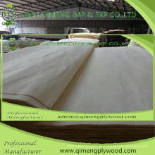 Abcd Grade Size Dicke 0,15-0,50 mm Pappel Furnier für Sperrholz