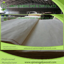 Abcd Grade Size Thickness 0.15-0.50mm Poplar Veneer for Plywood