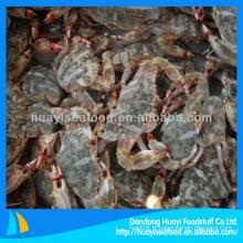 Nouvelle saison de crabe de boue congelée 40g