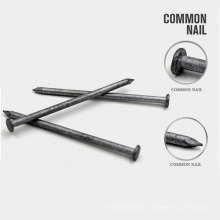Professional Factory Directly Sale Common Nail and Steel Nail
