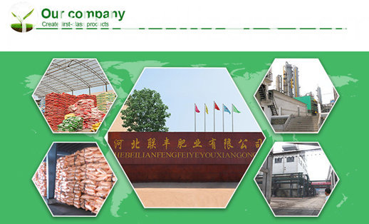 humic acid with amino acid factory