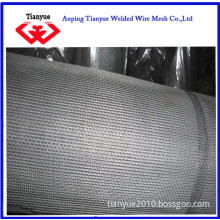 Stainless Steel Wire Netting for Filter