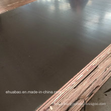 18mm Korindo Quality of Film Faced Plywood Board in China