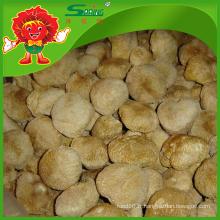 Hericium Erinaceus séché à vendre champignon sauvage comestible rare