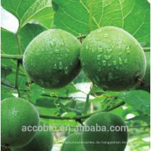 Natürlicher Qualitäts-Süßstoff-freier Mönch-Frucht-Extrakt 10% ~ 55% Mogrosid V-Pulvermönchfrucht-Auszugspulver