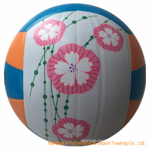 Colorful Complex Logo Sporting Volleyball
