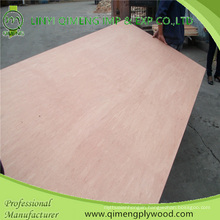 Poplar/Hardwood Core Bbcc Grade 12mm Bintangor Plywood with Cheap Price