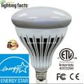 A2 Energy Star 20W R40 / Br40 Völlig dimmbare Birne / Licht / Lampe