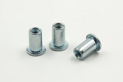 Round Head Rivet Nut