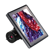 Cámara digital Bestscope Blc-220 HD LCD