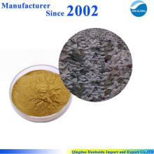 Heißer Verkauf hochwertiger Natur Perilla Blatt Extrakt, Perilla Extrakt, Perilla Blatt PE