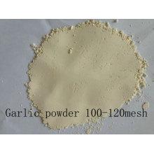 100-120mesh Garlic Powder Air Dehydrated