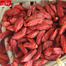 2017 new ningxia wholesale iqf goji berry raw material