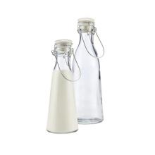 2016 Горячие стеклянные бутылки молока 250мл для продажи, сделанные в Китае