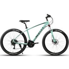 Cheap Bike Steel Frame 11 Speed MTB Mountain Bicycle