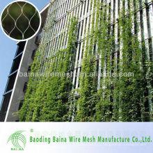 Красивая сетка из зеленой стены