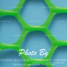 Hexagonal Shape Grass Protection Mesh