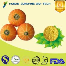 Grado alimenticio sin sabor artificial Producto polvo de vegetales deshidratados con calabaza orgánica