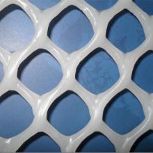 Hecho en China Buena calidad Plastic Net