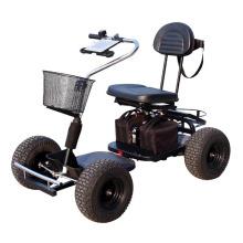 24V Einzelsitz Trekker Golf Cart 413G-2
