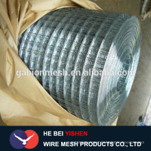 Best selling! electro galvanized welded wire mesh direct factory