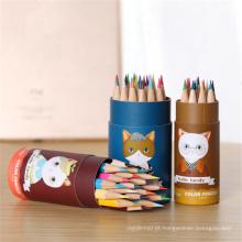 lápis de desenho de cor de madeira chique