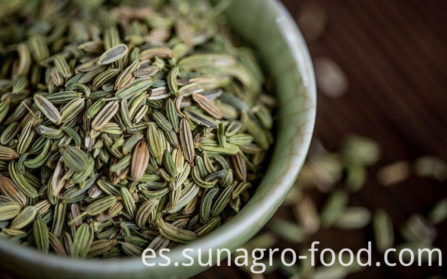 Fine Natural Fennel Seeds